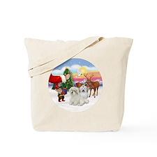 R-Treat for 2 Coton De Tulears Tote Bag