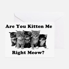 Light Kitten Me Right Meow Greeting Card