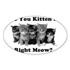 Light Kitten Me Right Meow Decal