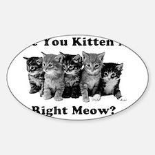 Light Kitten Me Right Meow Sticker (Oval)