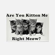 Light Kitten Me Right Meow Rectangle Magnet