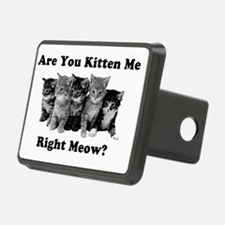 Light Kitten Me Right Meow Hitch Cover