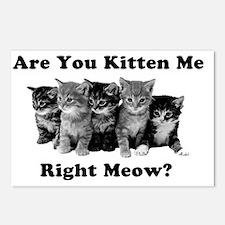 Light Kitten Me Right Meo Postcards (Package of 8)