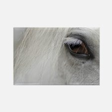 PUZZLE - White Horse Rectangle Magnet
