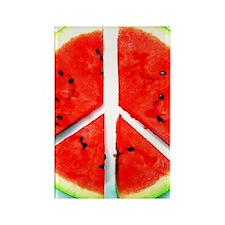 Peace Melon Rectangle Magnet