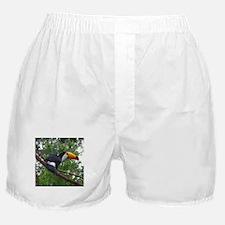toucan Boxer Shorts