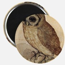 Albrecht Durer The Little Owl Magnet