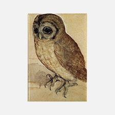 Durer Owl Rectangle Magnet