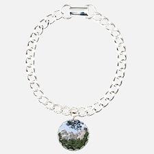 Mount Rushmore Charm Bracelet, One Charm