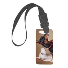 db2_nexus Luggage Tag