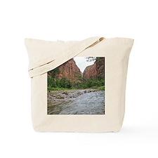 Zion Riverwalk Tote Bag