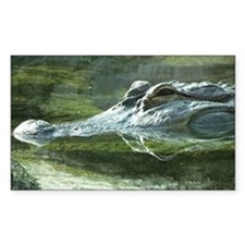 Alligator Photo Decal