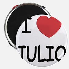 I heart JULIO Magnet