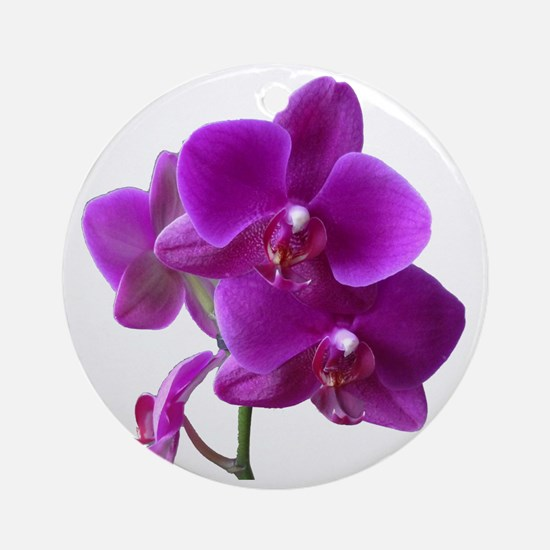 Striking Purple Orchid Flower Round Ornament