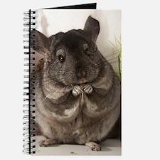 lovely chinchilla Journal
