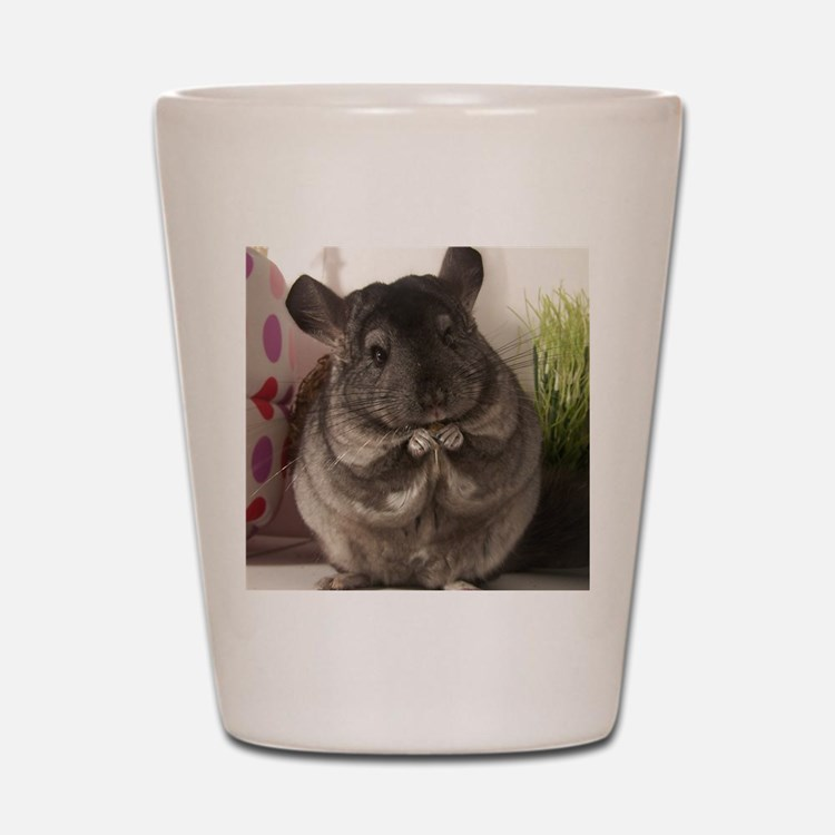 lovely chinchilla Shot Glass