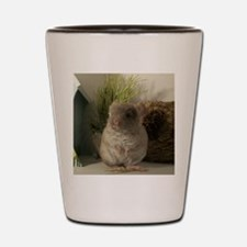 Beautiful brown velvet chinchilla Shot Glass