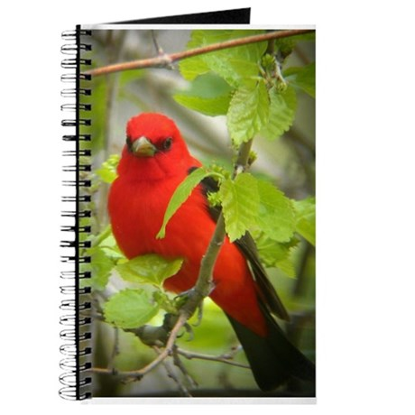 Scarlet Tanager Journal