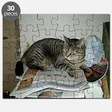my cat tinker Puzzle