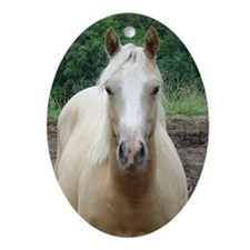 Nelly - Yearling Filly Oval Ornament