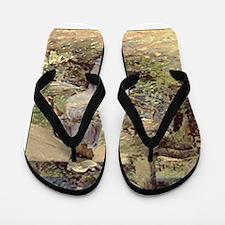 theodore robinson Flip Flops