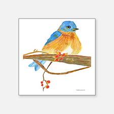 "Young Bluebird Square Sticker 3"" x 3"""