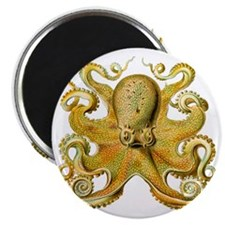 Yellow Octopus Magnet