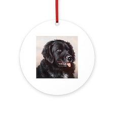 an_square_sticker_632_h_f Round Ornament