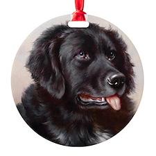 an_jewelery_case Ornament