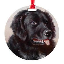 an_round_coaster Ornament