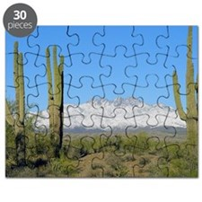 Snowy Four Peaks no Border Puzzle