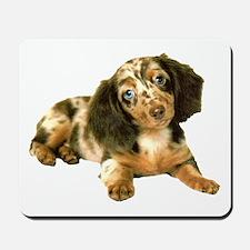 Shy_Low Puppy Mousepad