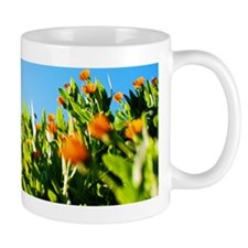 Field of orange flowers Mug