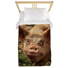 UGLY PIG IN THE FEDERATED STATE OF MICR Twin Duvet