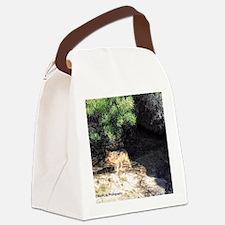 desert wolf Canvas Lunch Bag