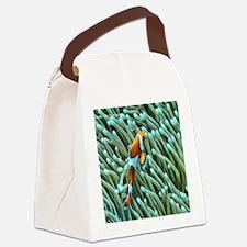orange clownfish Canvas Lunch Bag