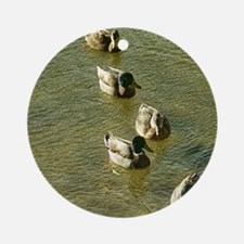 sychronized swimming duck Round Ornament