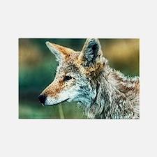 desert coyote Rectangle Magnet