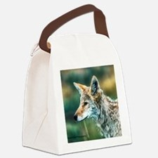 desert coyote Canvas Lunch Bag