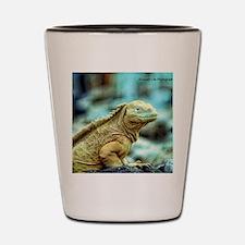 desert lizard Shot Glass