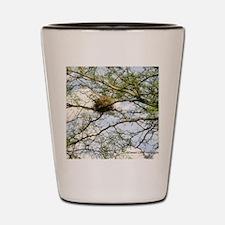 bird nest Shot Glass