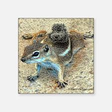 """desert ground squirrel Square Sticker 3"""" x 3"""""""