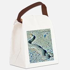 rattlesnake Canvas Lunch Bag