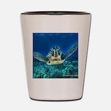 aquatic sea turtle Shot Glass