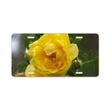 Rose and Raindrops Aluminum License Plate