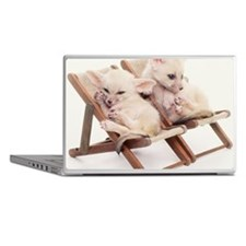 TWO FENNEC FOXES IN CHAIRS Laptop Skins