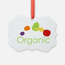 Organic Fruits 2 Ornament