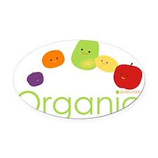 Organic Fruits 2 Oval Car Magnet