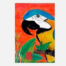 Parrot Head Postcards (Package of 8)
