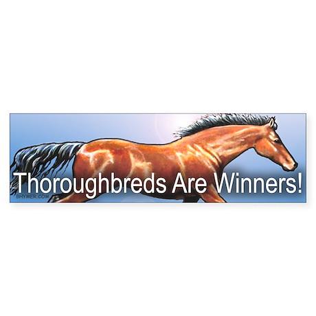 Winners (Bay) Bumper Sticker